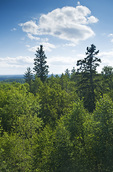 view from Baldy Mountain, highest point in Manitoba,  Duck Mountain Provincial Park, Manitoba, Canada