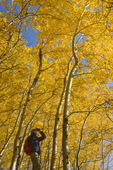 hiker bird watching, autumn, aspen trees in Birds Hill Provincial Park, Manitoba, Canada