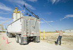 a man opens the tarp on a farm truck hauling oats to an inland terminal Rosser, Manitoba, Canada