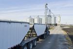 a farm truck/super B hauling grain/feed corn to a farmer's grain storage facility during the harvest near Niverville, Manitoba, Canada
