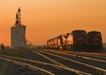 trains on sidind, inland grain terminal, Dunmore, Alberta , Canada