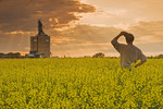 a man looks out over a blooming canola field with an inland grain terminal in the background, near Elva, Manitoba, Canada