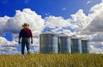 a farmer walks out over his spring wheat stubble field with grain storage bins in the background, near Carey, Manitoba, Canada