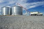 a farmer  unloads winter wheat into one of a set of newly erected grain storage bins, near Kane,  Manitoba, Canada