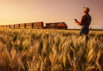 a man using a tablet in a spring wheat field near a passing train  carrying containers , near Dufresne, Manitoba, Canada