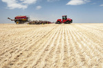 moving tractor and air till seeder planting canola in a zero till wheat stubble field, near Somerset, Manitoba, Canada