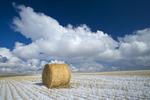 wheat straw roll, stubble and  sky with clouds, near Hazenmore, Saskatchewan Canada