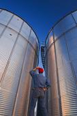 a man looks out over grain storage bin, near Lorette,  Manitoba, Canada