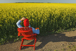 a man  sits in a red chair in front of a bloom stage canola field,  Tiger Hills, Manitoba, Canada