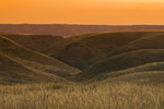 South Saskatchewan River Valley near Sandy Point Park, north of Medicine Hat, Alberta, Canada.