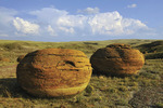 Sandstone concretions in Red Rock Coulee Natural Area, Alberta, Canada