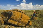 a hiker looks out over sandstone concretions in Red Rock Coulee Natural Area, Alberta, Canada