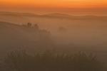 sunrise over the Great Sandhills, near Sceptre, Saskatchewan, Canada
