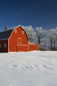 red barn , winter, near Beausejour,  Manitoba, Canada