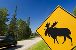 moose road sign and passing truck, Riding Mountain National Park, Manitoba, Canada