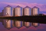grain storage bins, near Lorette,  Manitoba, Canada