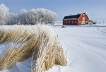 red barn , winter, near Oakbank,  Manitoba, Canada