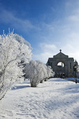 hoar frost on trees with St. Boniface Cathedral in the background, Winnipeg, Manitoba, Canada