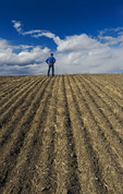 a man scouts a newly seeded field, Tiger Hills, Manitoba, Canada