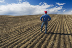 a man looks out over a newly seeded field, Tiger Hills, Manitoba, Canada