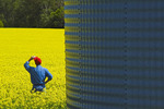 man in a field of bloom stage canola with grain bin in the foreground,  Tiger Hills, Manitoba, Canada