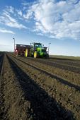 planting potatoes, near Cypress River, Manitoba, Canada