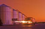 grain truck on the move/ grain storage bins, near Lorette,  Manitoba, Canada