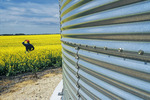 close up of grain storage bin with canola field and farmer in the background, near Dugald,  Manitoba, Canada