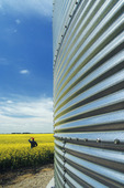 close up of grain storage bin with canola field in the background, near Dugald,  Manitoba, Canada