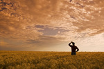 a man looks out over a field of maturing winter wheat with clouds in the background, near Carey, Manitoba, Canada