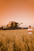 a farmer in in a wheat field at sunset with his combine harvester in the background, near Lorette, Manitoba, Canada