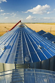 close up of grain storage bins with wheat field in the background, near Lorette,  Manitoba, Canada