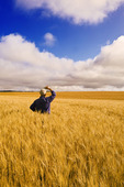 a man looks out over a field of maturing wheat, near Notre Dame de Lourdes, Manitoba, Canada