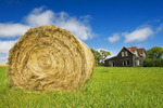 hay roll and old house, near Notre Dame de Lourdes, Manitoba, Canada