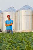 a young man in a soybean field, grain bins(silos) in the background,  Lorette, Manitoba, Canada