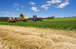 collecting alfalfa rolls near Bruxelles, Manitoba, Canada