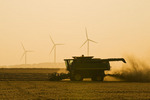 a combine harvests spring wheat , wind turbines are in the background, near St. Leon, Manitoba, Canada