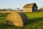 hay roll and old barn with grain elevators in the background, Cypress River, Manitoba, Canada