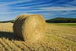 straw roll and farmland, Tiger Hills, Manitoba