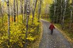 a man walks down a country road, near Kenora, Northwestern Ontario, Canada