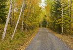 country road, near Kenora, Northwestern Ontario, Canada
