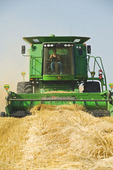 a farm girl operates a combine harvester during the spring wheat harvest near Somerset, Manitoba, Canada