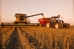 a combine empties into a grain wagon on the go during the soybean harvest, near Lorette, Manitoba, Canada