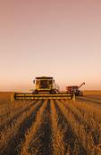 soybean harvest, near Lorette, Manitoba, Canada
