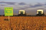 biofuel sign, soybean harvest