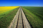 railway through canola and wheat fields, abandoned grain elevator in the background, Carey, Manitoba, Canada