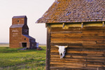 old house with grain elevator in the background, abandoned town of Bents, Saskatchewan, Canada