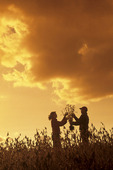 a farmer and his wife check a mature soybean field