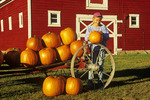 a girl holding pumpkins next to red barn