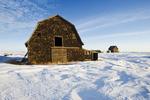abandoned farm, near Assiniboia, Saskatchewan, Canada